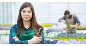 Як доглядати за зрізаними квітами