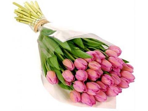 Букет з 25 рожевих тюльпанів