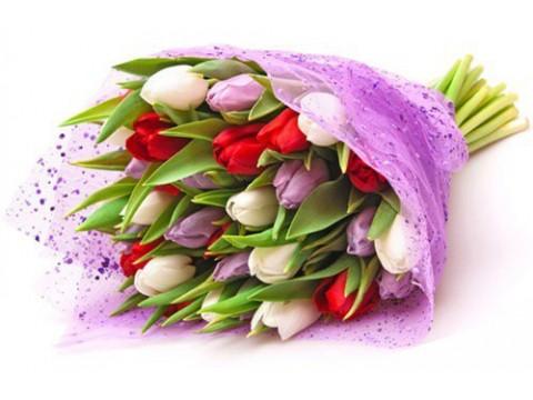 Букет з 25 тюльпанів
