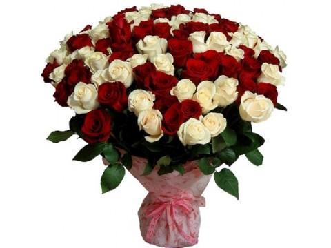 101 біла + червона троянда