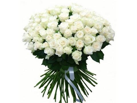 81 белых роз