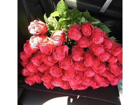 51 еквадорська троянда